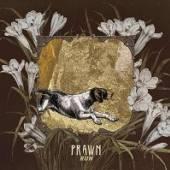 PRAWN  - VINYL RUN [VINYL]