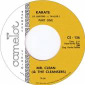 MR CLEAN AND THE CLEANSE  - SI KARATE /7