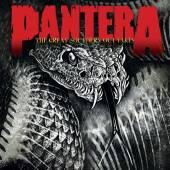 PANTERA  - VINYL GREAT SOUTHERN OUTTAKES [VINYL]
