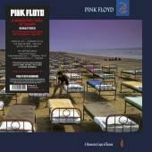 PINK FLOYD  - VINYL A MOMENTARY LA..