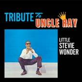 WONDER STEVIE  - CD TRIBUTE TO UNCLE RAY/..