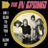 IN CROWD  - SI AM I GLAD TO SEE YOU /7