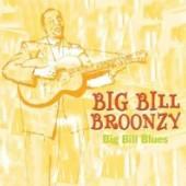 BROONZY BIG BILL  - CD BIG BILL BLUES