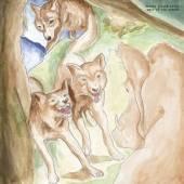 BONNIE PRINCE BILLY  - VINYL WOLF OF THE.. -DOWNLOAD- [VINYL]
