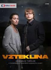 TV SERIAL  - 2xDVD VZTEKLINA