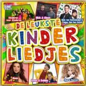 VARIOUS  - CD LEUKSTE KINDERLIEDJES