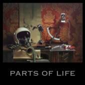 KALKBRENNER PAUL  - VINYL PARTS OF LIFE [VINYL]