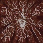 TRASH BOAT  - VINYL CROWN SHYNESS (VINYL) [VINYL]