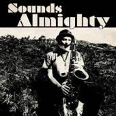 BIRCHALL NAT  - VINYL SOUNDS ALMIGHTY [LTD] [VINYL]