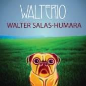 WALTER SALAS-HUMARA  - CDD WALTERIO
