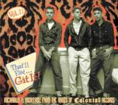 VARIOUS  - CD THAT'LL FLAT GIT IT! 31