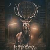 IN THE WOODS  - 2xVINYL CEASE THE DAY [VINYL]