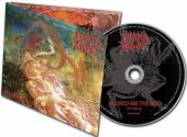 MORBID ANGEL  - CD BLESSED ARE THE SICK FDR