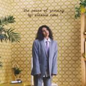 CARA ALESSIA  - VINYL PAINS OF GROWING [VINYL]