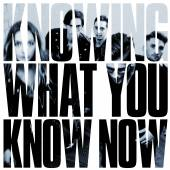 MARMOZETS  - CD KNOWING WHAT YOU KNOW NOW