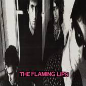 FLAMING LIPS  - VINYL IN A PRIEST DR..