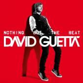 GUETTA DAVID  - VINYL NOTHING BUT TH..