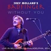 JOEY MOLLANDS BADFINGER  - CD LIVE IN SELLERSVILLE, PA, 2010