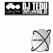 LOOPS LAND [VINYL] - supershop.sk