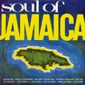VARIOUS  - VINYL SOUL OF JAMAIC..