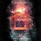 HARRIS JASON HAWK  - VINYL LOVE & THE DARK [VINYL]
