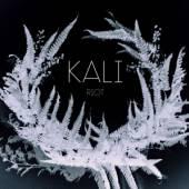 KALI  - CD RIOT