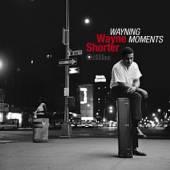 SHORTER WAYNE  - VINYL WAYNING MOMENTS -HQ- [VINYL]