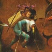 ZORN JOHN  - CD PAINTED BIRD
