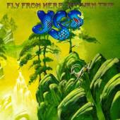 YES  - VINYL FLY FROM HERE ..