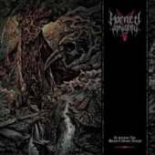 HORNED ALMIGHTY  - CD TO FATHOM THE MASTER'S GRAND DESIGN