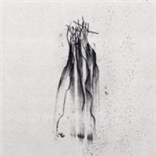 NORDVARGR  - VINYL DAATH [LTD] [VINYL]