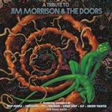 TRIBUTE TO JIM MORRISON & THE ..  - VINYL TRIBUTE TO JIM..