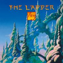 YES  - CD THE LADDER