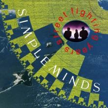 SIMPLE MINDS  - CD STREET FIGHTING YEARS