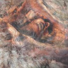 CONVERGE  - CD UNLOVED AND WEEDED OUT