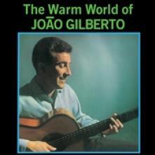 JOAO GILBERTO  - VINYL WARM WORLD OF ..