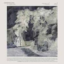 CONSTELLATIA  - CD THE LANGUAGE OF LIMBS
