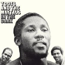 TOOTS & THE MAYTALS  - VINYL IN THE DARK -H..
