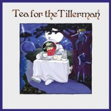 YUSUF/CAT STEVENS  - CD TEA FOR THE TILLERMAN 2
