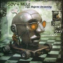 GOV'T MULE  - 2xVINYL LIFE BEFORE.. -COLOURED- [VINYL]
