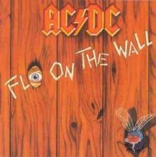 AC/DC  - VINYL FLY ON THE WALL [VINYL]