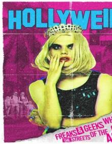 FEATURE FILM  - DVD HOLLYWEIRD