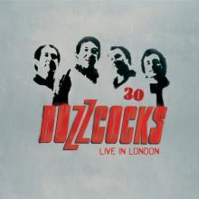 BUZZCOCKS  - 2xVINYL 30 (LIVE IN ..