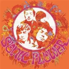 SONIC FLOWER  - VINYL SONIC FLOWER -COLOURED- [VINYL]