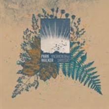 MACHADO JEAN-MARIE & LIEBMAN  - CD CAMINANDO