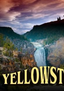FEATURE FILM  - DVD YELLOWSTONE