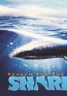 FEATURE FILM  - DVD SEARCH FOR THE GREAT SHARKS