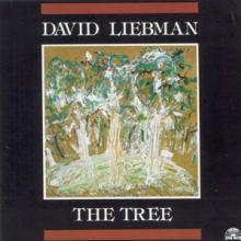 LIEBMAN DAVID  - CD TREE