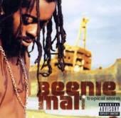 BEENIE MAN  - CD TROPICAL STORM