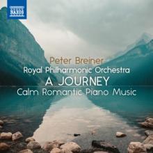 BREINER PETER  - CD JOURNEY